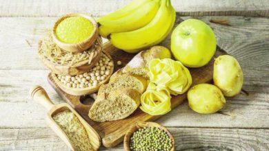 Protéines et glucides