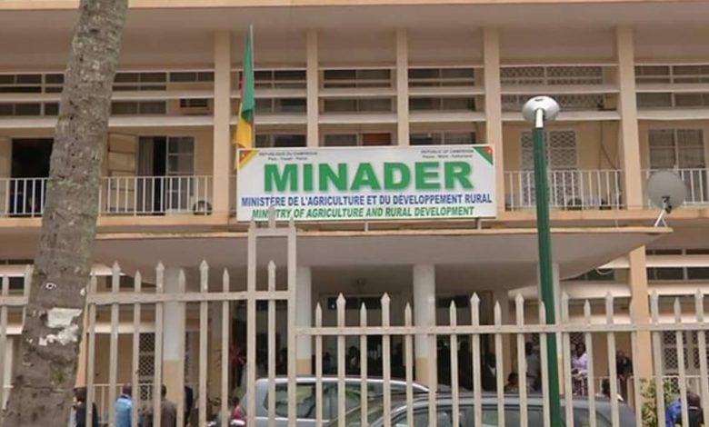 Minader
