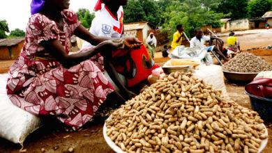 Vendeuses d'arachides